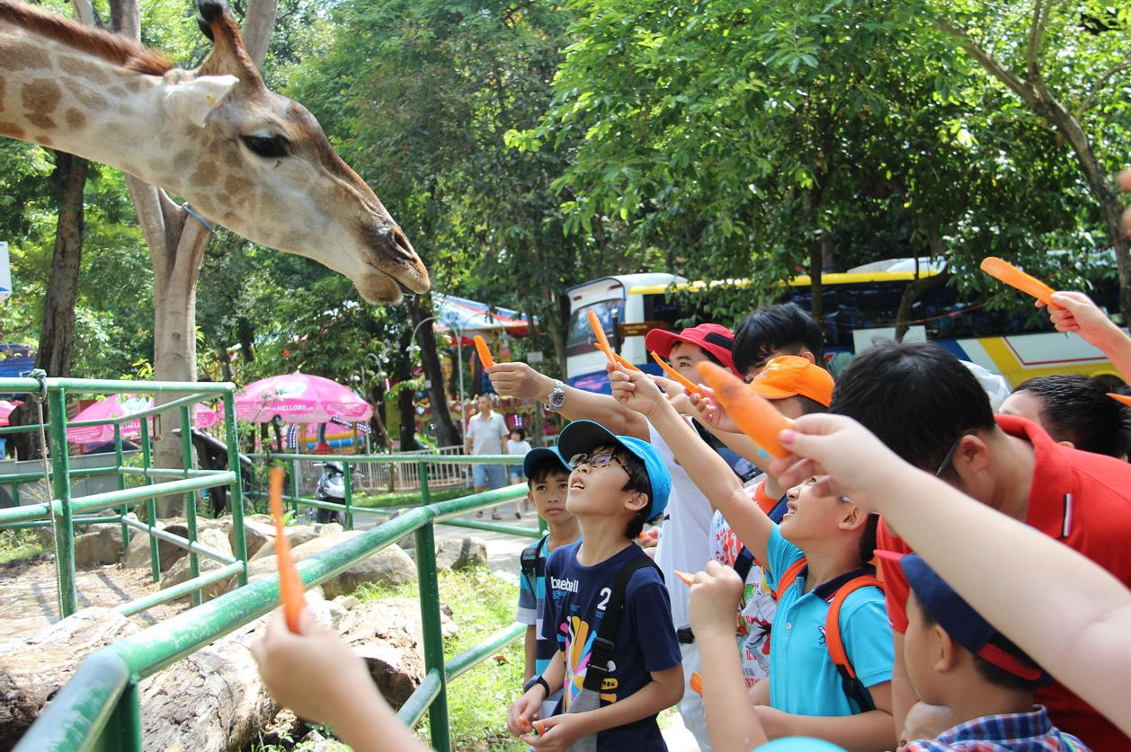 hoạt động vui chơi dành cho trẻ em tại Thảo Cầm Viên